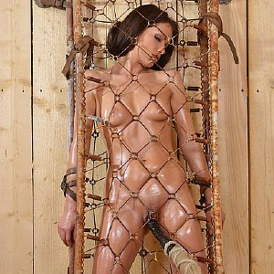 Sophie Lynx is bound