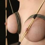 Cruelly Torture Tits