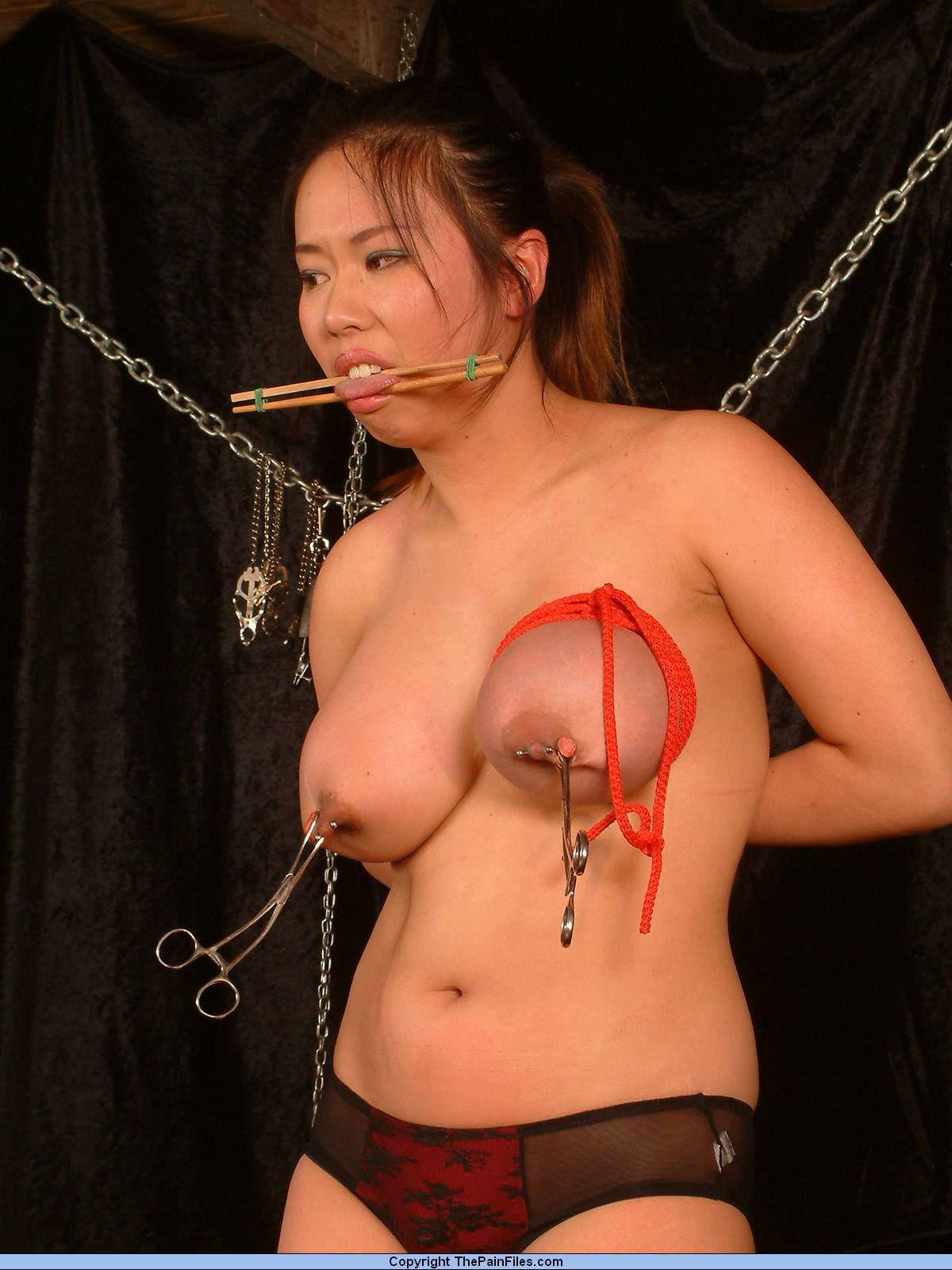 Japanese Bdsm Of Tigerr | Love And Sex