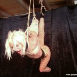 Collared blonde submissive Little Miss Chaos