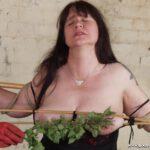 Mature Painslut Jays Stinging Nettle BDSM
